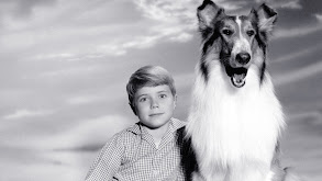 For the Love of Lassie thumbnail