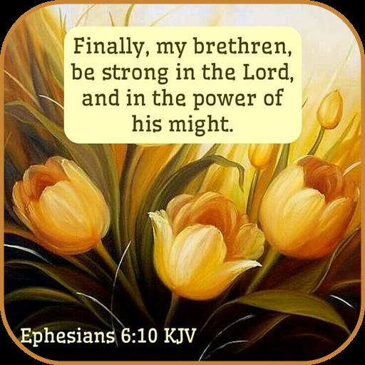 Bible Verse Daily