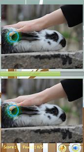 Najít Rozdíl hry Rabbit - náhled