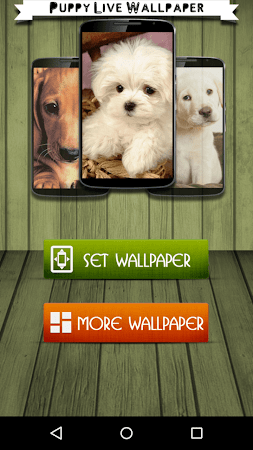 Puppy Live Wallpaper eta screenshot 2092573