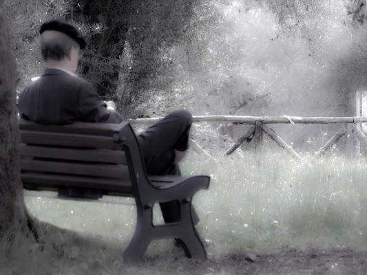 Pensieri in solitudine di vincenzob