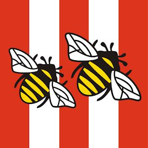 Brentford FC programmes download