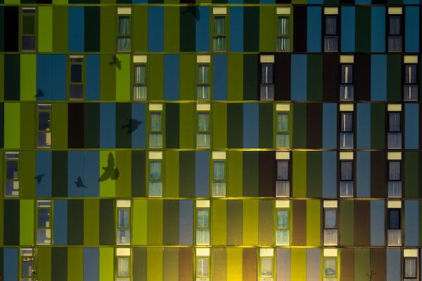 Green&Blue di Desperate_Architect