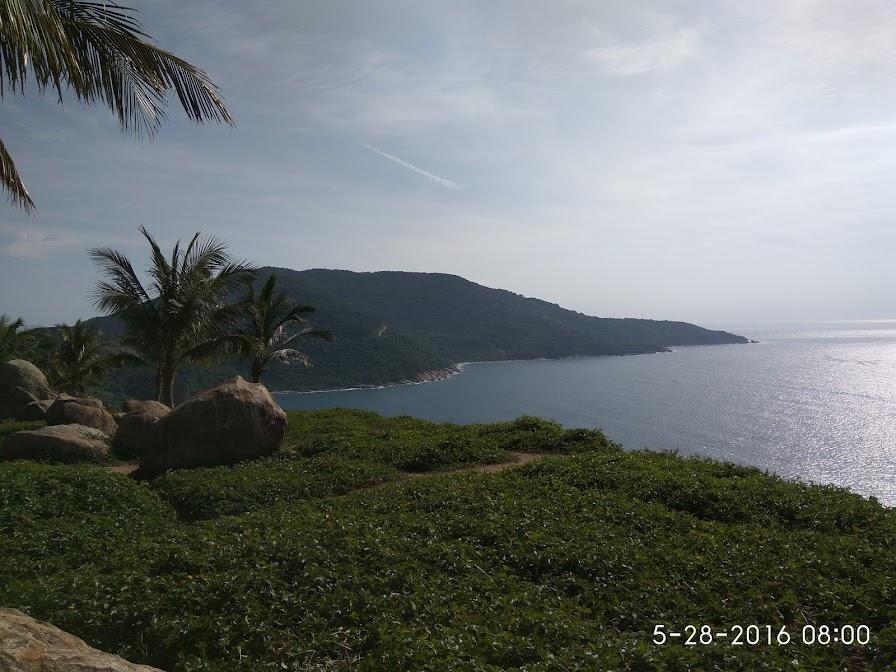 Sơn Trà xanh biển, xanh rừng