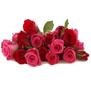 Roses Stickers For Whatsapp – WAStickerApps 1