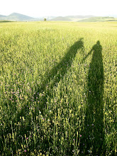 Photo: Our shadows at sunset on the lush fields surrounding Durmitor NP