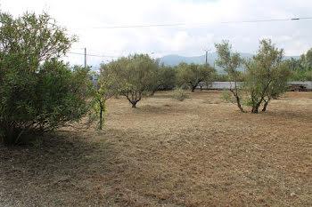 terrain à Gonfaron (83)
