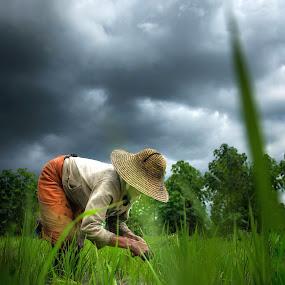 work for life by Arubam Meitei - People Portraits of Women ( farm, farmer, manipur, green, rural,  )