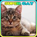 Super Cat 3D icon