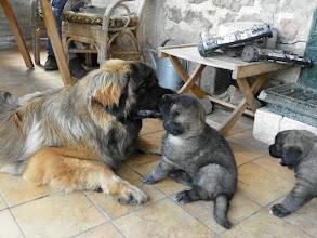 Photo: Il me fait des gros bisous, moi je l'aime bien, il va me protéger je crois