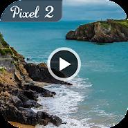HD Google Pixel 2 & Video Live Wallpapers 1 1 latest apk