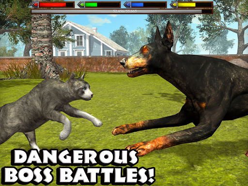 Download Ultimate Cat Simulator MOD APK 10
