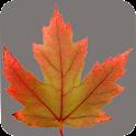 Alberta Wildflowers icon