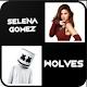Selena Gomez mp3 Offline Download for PC Windows 10/8/7