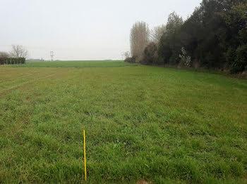terrain à Le Mesnil-Simon (28)