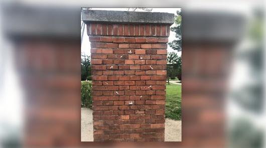 Arrancan la placa en homenaje a La Veneno una semana después de su inauguración