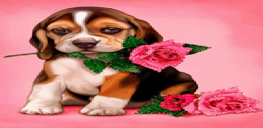Puppy Rose Live Wallpaper - Apps on