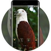 Eagle bird theme-metal retro APK