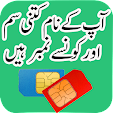 Pakistan SI.. file APK for Gaming PC/PS3/PS4 Smart TV