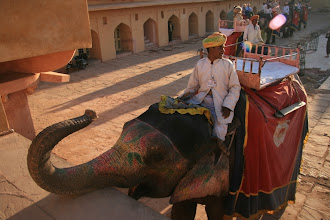 Photo: Linnakkeelle saattoi nousta norsulla tai jeepilla - valitsimme norsun