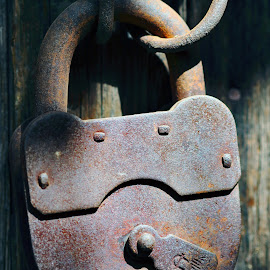 Old padlock by Sergey Sokolov - Artistic Objects Still Life ( oxidate, steel, damage, corrosion, pine, stainless steel, rusting, paint, decay, connexion, fret, confine, friable, blister rust, redox, tie, bind, white, rust-brown, attachment, spectroscopy, enchain, christian, eat, ferric oxide, connection, attach, stock, oxygen, zinc, oxidize, greek, chain, nature, metal, rusty, corrode, adhere, religion, corroding, oxide, patina, oxidise, aluminium, erosion, iron )