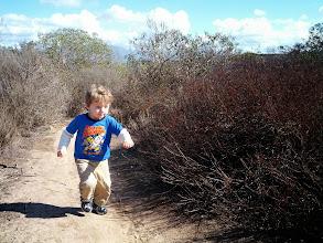 Photo: Finn Runs Up A Hill in Laguna Canyon