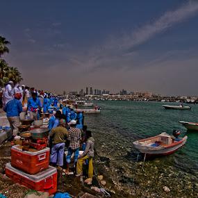 Doha Corniche Fish Trade by Marlon Diwata - Landscapes Travel