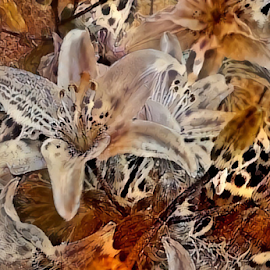 Lilies 10 by Cassy 67 - Digital Art Things