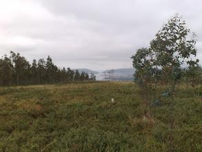 Photo: Vista de la Ría de Ferrol desde el vértice geodésico de Marraxón