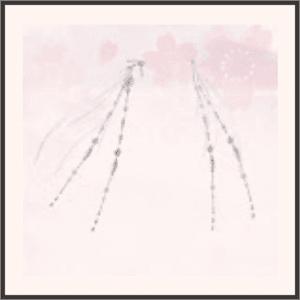 夜桜の言葉