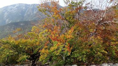 Photo: Jesen polako dolazi