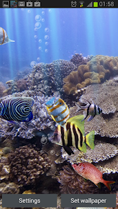 The real aquarium – Live Wallpaper – Mod APK Latest Version 3
