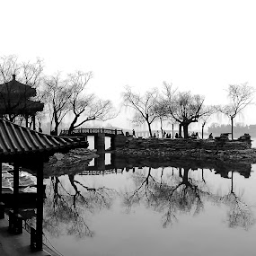 by Alvin Ngow - Landscapes Travel ( relax, imperial, jetty, travel, architecture, people, asian, free, nature, weather, travel locations, china, cool, mood, leisure, lake, summer palace, relaxing, waterscapes, holiday, landmark, trees, tranquility, bridge, beijing, mood factory, 中国景点, ambience, reflection, b&w, black and white, arbor, china scenery, spring, china attractions, tranquil, happy, asia, activity, water, building, park, attractions, pavilion, beautiful place, mirror lake, enjoy, history, 北京颐和园, background, outdoor, beijing attractions, scenery, landscapes, garden, 北京景区,  )