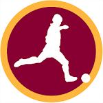 Europa League 2014/2015 Icon