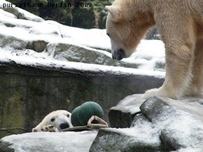 Photo: Hm, will sie mir wirklich das Spielzeug geben ?