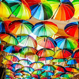 Umbrellas by Richard Michael Lingo - Artistic Objects Clothing & Accessories ( artistic objects, ceiling, bucharest, accessories, umbrellas,  )