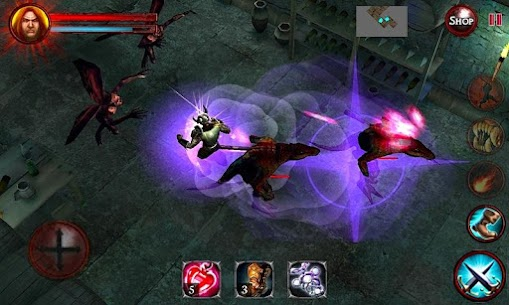 Dungeon and Demons  – Offline RPG Dungeon Crawler 5