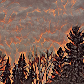 Paradise Lost by Rick Caplan - Illustration Flowers & Nature ( sky, paradise, fire, california, trees )