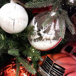by Barbara Boyte - Public Holidays Christmas ( , Christmas, card, Santa, Santa Claus, holiday, holidays, season, Advent )