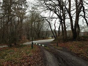 Photo: Forêt Communale de Vatteville-la-Rue