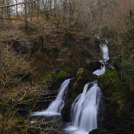 Colwith Force by DJ Cockburn - Landscapes Waterscapes ( england, forest, britain, nature, countryside, rural, tree, winter, deciduous, white water, long exposure, water, colwith force, atkinson's coppice, lake district, waterscape, uk, waterfall, river brathay, wood, river, cumbria, landscape )