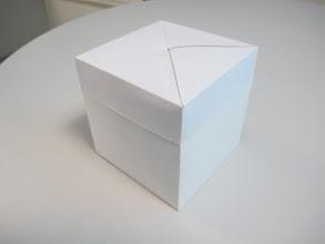 Photo: Caixa (12) simples com tampa (duas peças).