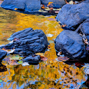 FALL MIRROR by Marc-Andre Grenier - Nature Up Close Water ( fall colors, waterscapes, rocks, reflection, yellow )