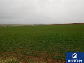 terrain à Auxon (10)