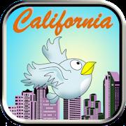 California Bird