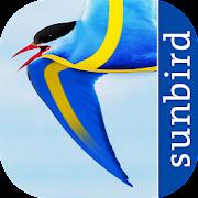 App Icon for All Birds Sweden - A Sunbird Field Guide App in Czech Republic Google Play Store