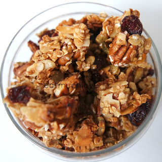 Maple Pecan Granola Clusters (vegan Friendly)