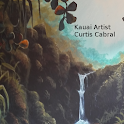 Kauai Artist Curtis