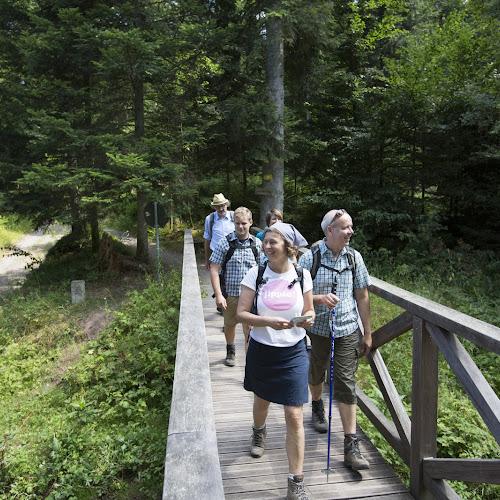 Eine Wandergruppe unterwegs bei einer geführten Tour