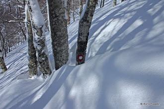 Photo: prtimo preko pola metra snijega hrabro